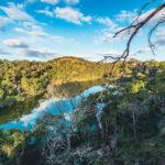 The Ancient Aboriginal Engineering of the Budj Bim Eel Traps
